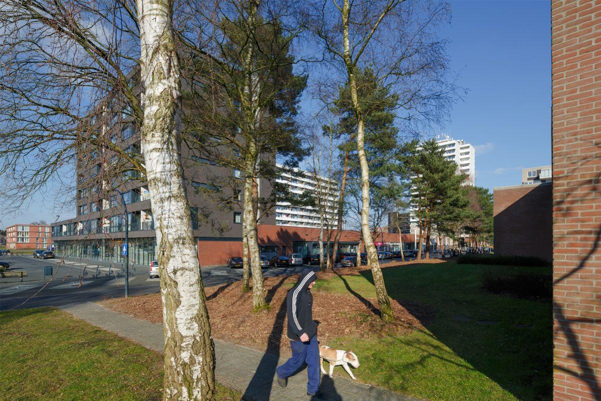 De Nijl Architecten - Masterplan Emmerhout